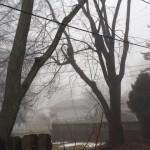 FF Fog 3.11.15 1230Z copy